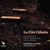 AliaMens_CitéCeleste-300x300